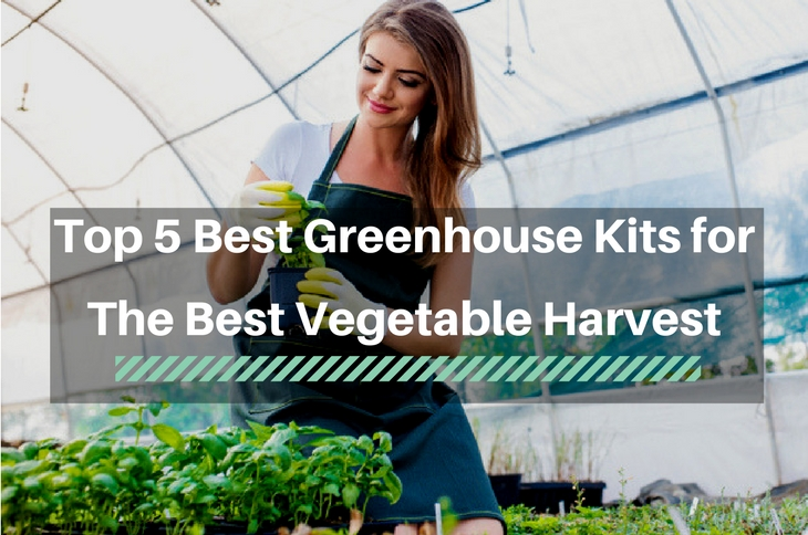 Top 5 Best GreenHouse Kits