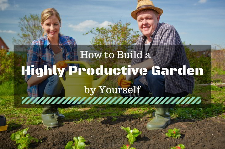 Build a Highly Productive Garden